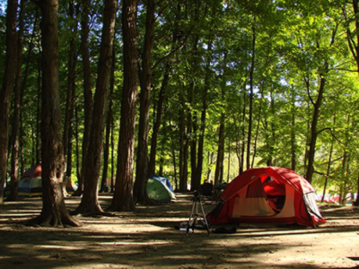 camping-cookeville-tn